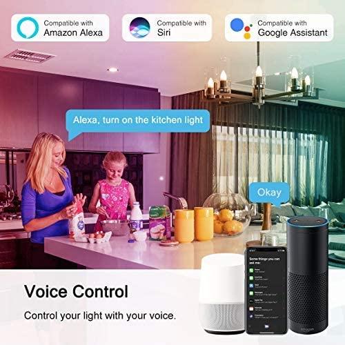 Lohas Voice Control