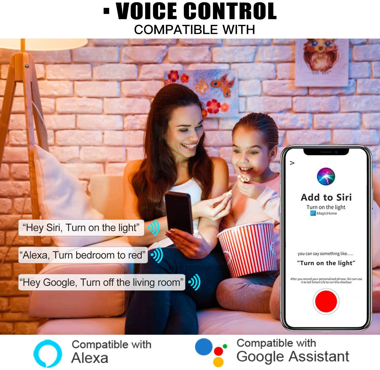 Magic Hue Smart Voice Control